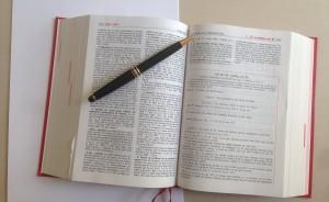 stephane larriere code civil